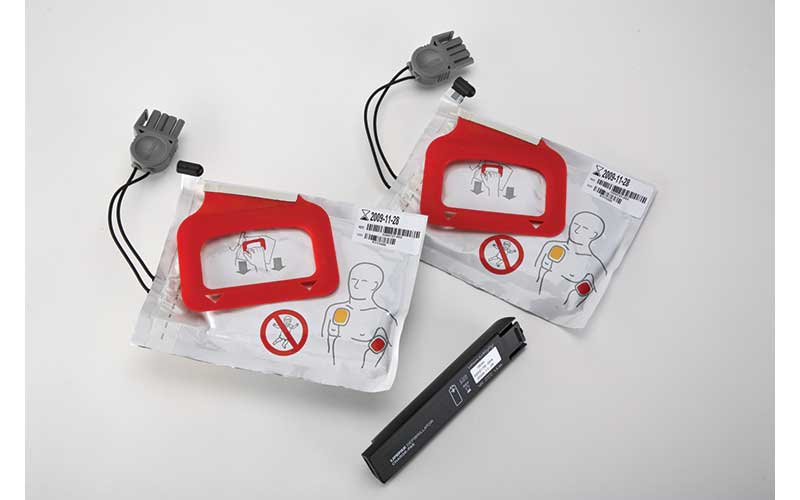 Lifepak 2 Adult Electrode Kit With Chargepak